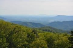 Blåa Ridge Mountains i sommar Arkivfoto