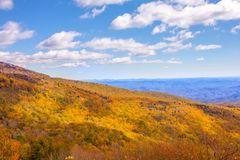 Blåa Ridge Mountains, North Carolina Royaltyfria Bilder