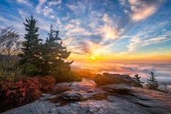 Blåa Ridge Mountains, scenisk soluppgång royaltyfri bild