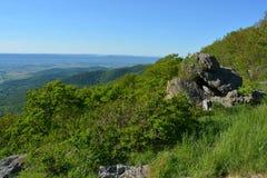Blåa Ridge Mountains vaggar bildande i sommar Arkivbilder