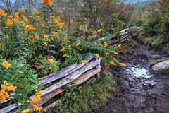 Blåa Ridge Parkway Trails Arkivbilder