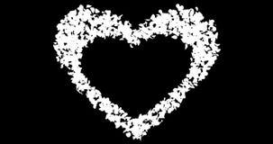 Blåa Rose Flower Petals In Heart Shape Alpha Matte Placeholder Loop 4k stock illustrationer