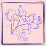 Blåa rosor för vykort stock illustrationer