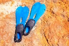 Blåa scubadykningfenor på sommardag över rock royaltyfri fotografi