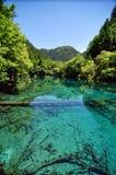 Blåa sjöar på bergen i Jiuzhaigou Valley skönhetfläck Royaltyfria Bilder