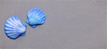 blåa skal arkivfoton