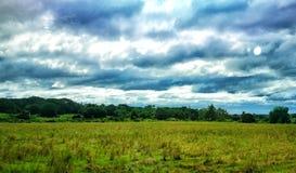 blåa skies Royaltyfri Foto