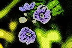 Blåa små blommor stänger övre och grönt gräs Arkivfoton