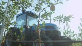 Blåa traktorflyttningar bland Apple träd med mogna frukter arkivfilmer