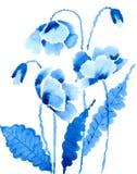 blåa vallmor Arkivfoton