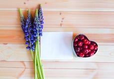 Blåa vildblommor lupine, ask för hjärtaformgåva med den nya körsbäret och tomt kort för din text Royaltyfria Bilder