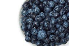 blåbär bowlar white Royaltyfria Bilder