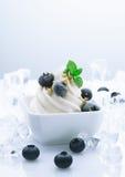 blåbär fryst joghurt fotografering för bildbyråer