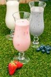 Blåbär-, jordgubbe- och bananmilkshake royaltyfri foto