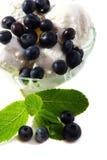 blåbär lagar mat med grädde isminten Arkivfoto