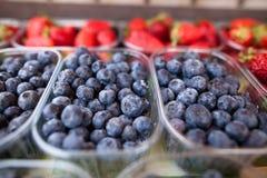 Blåbär och jordgubbar royaltyfri bild