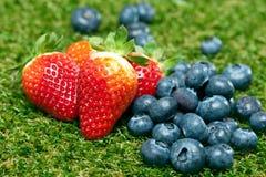 Blåbär och jordgubbar på en lawn Royaltyfri Bild