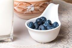 blåbär och mjölkar produkter på trätabellen Arkivbild