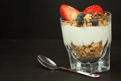 Blåbär och oatmeal Sund mat för ungar Yoghurt och frukt för idrottsman nen banta mat arkivbild