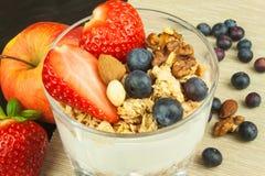 Blåbär och oatmeal Sund mat för ungar Yoghurt och frukt för idrottsman nen banta mat royaltyfri bild