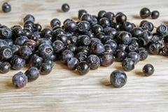 blåbär på ett ljust bräde Arkivbild