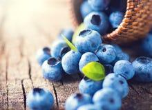Blåbär på träbakgrund Arkivfoto