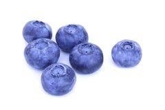 blåbär stänger sig upp Arkivbilder