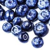 Blåbärantioxidantsuperfood som isoleras på vit bakgrund M Royaltyfri Foto