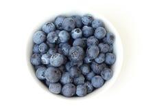 blåbärbunke Royaltyfri Fotografi