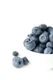 blåbärbunke Royaltyfri Foto