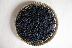 blåbärcake arkivbild