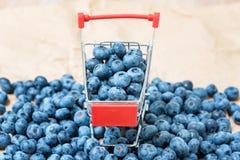 Blåbäret bär frukt i mini- shoppingvagn Selektiv fokus på blåbären i liten spårvagn Royaltyfria Bilder