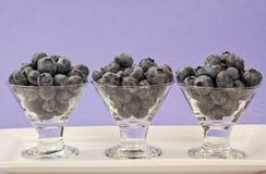 blåbäret cups tre Fotografering för Bildbyråer