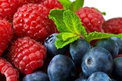 blåbäret låter vara minten rasperry royaltyfri fotografi