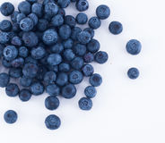 Blåbärfrukt Fotografering för Bildbyråer