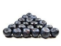 blåbärgrupp Arkivbilder