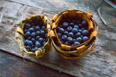 Blåbärkorg royaltyfri fotografi