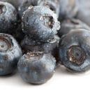 blåbärliten droppesötvatten Arkivfoton