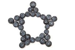 blåbärramstjärna Fotografering för Bildbyråer