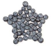 blåbärstjärna Arkivbilder