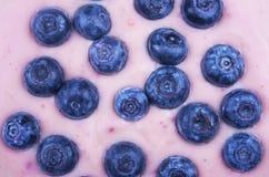 blåbäryoghurt Fotografering för Bildbyråer