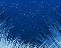 blågräs Royaltyfri Bild