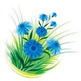 blåklintgräs