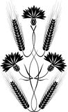 blåklintprydnadryes Arkivbild