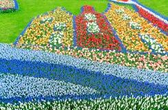 Blåklockan blommar floden Arkivbild