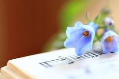 Blåklockor på en musikbok Fotografering för Bildbyråer