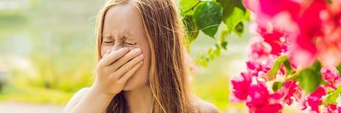 Blåsa näsa för ung nätt kvinna framme av att blomma trädet BANER för vårallergibegrepp, LÅNGT FORMAT royaltyfri bild