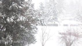 Blåsa Snow arkivfilmer