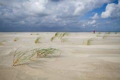 blåsig stranddag Royaltyfri Bild