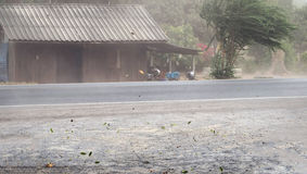 Blåste damm och sidor för vind storm på vägen royaltyfri foto